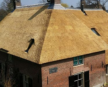 Rieten dak - Den Hartog riet