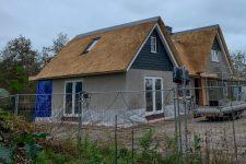 Den Hartog riet - Tienhoven, Nieuwbouw