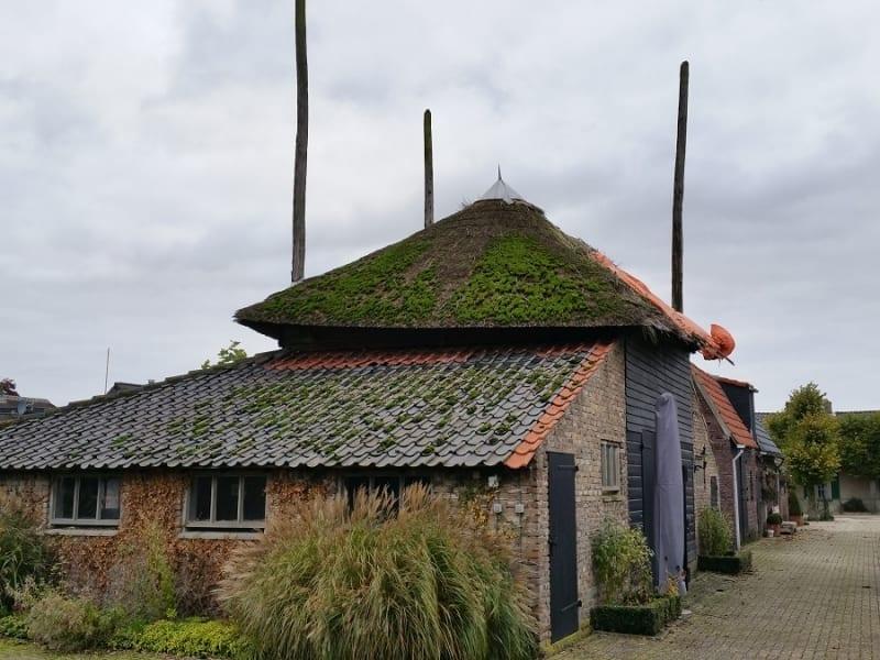 Den Hartog riet - Restauratie hooiberg