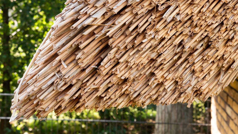 Eikenhouten tuinkamer