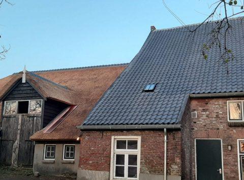 Den Hartog riet - Divers project Acquoy