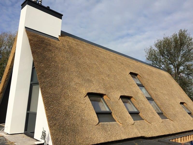 Modern Rieten dak