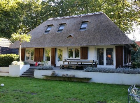 Den Hartog riet - Rietdekken in Hilversum