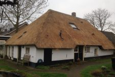 Den Hartog riet - Renovatie rieten dak te Tuil