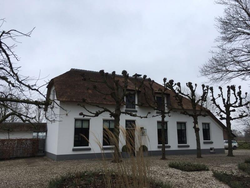 Renovatie rieten dak te Vleuten